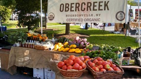 Obercreek Farm 2.jpg